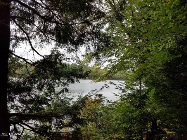 Chestnut Lake Dr Beach Lake, PA 18405 - MLS #: 17-5292