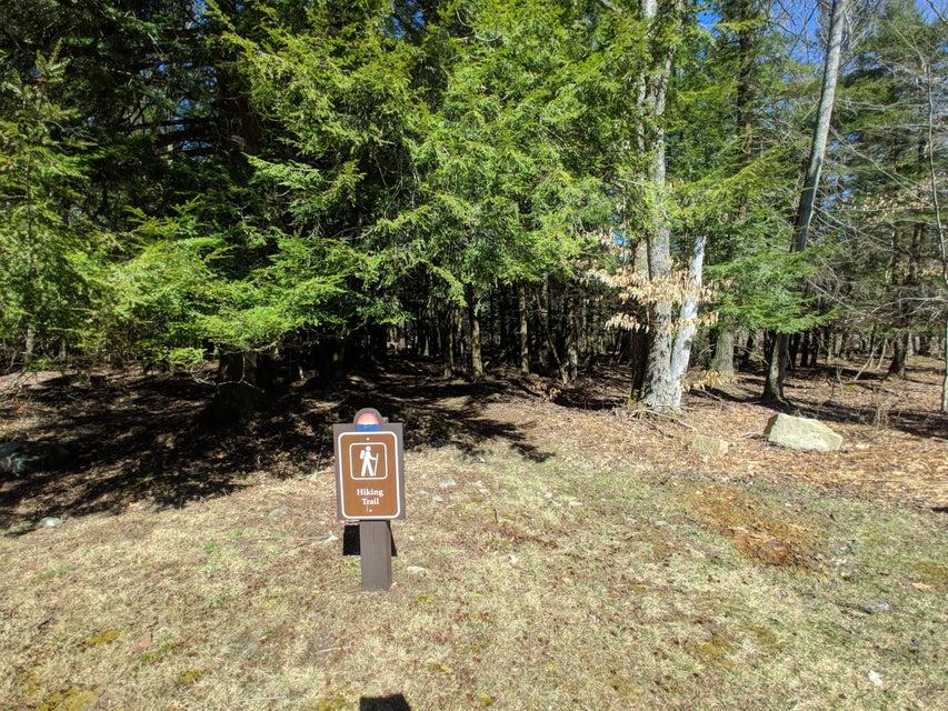 Lot 113 Hemlock Ct Gouldsboro, PA 18424 - MLS #: 18-1854