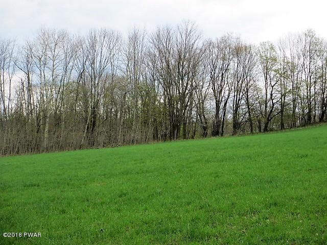 0 Sepko Rd Moscow, PA 18444 - MLS #: 18-2043