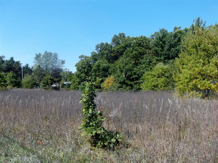 Land for Sale at Apple Apple Muskegon, Michigan 49442 United States