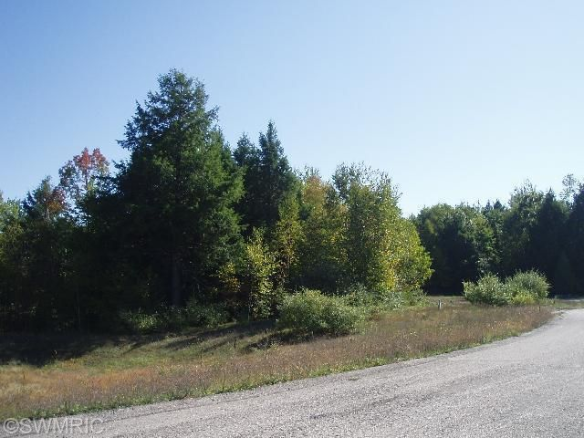Land for Sale at Parcel EE Wildflower Onekama, Michigan 49675 United States