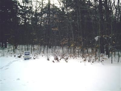 Land for Sale at 6187 Scenic Woods Muskegon, Michigan 49445 United States