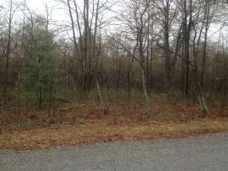 Land for Sale at Holton Muskegon, Michigan 49445 United States