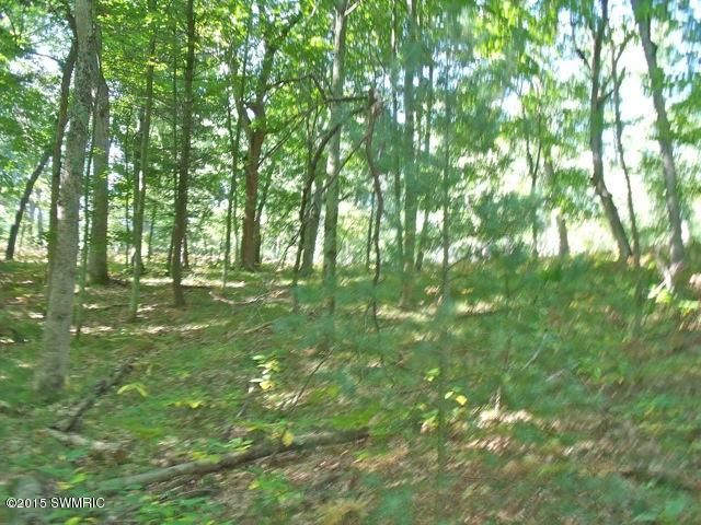 Land for Sale at River River Muskegon, Michigan 49445 United States