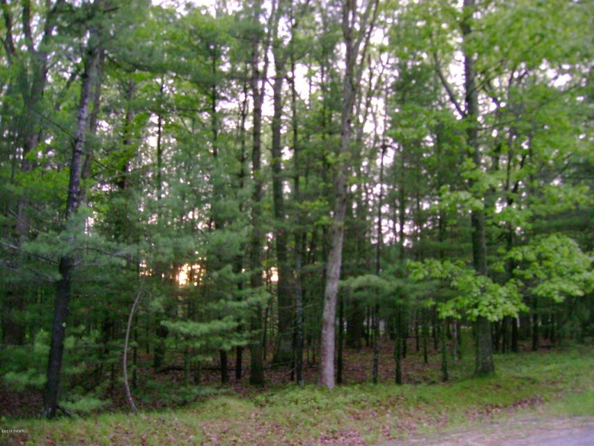 Land for Sale at MEADOW WOOD Manistee, Michigan 49660 United States