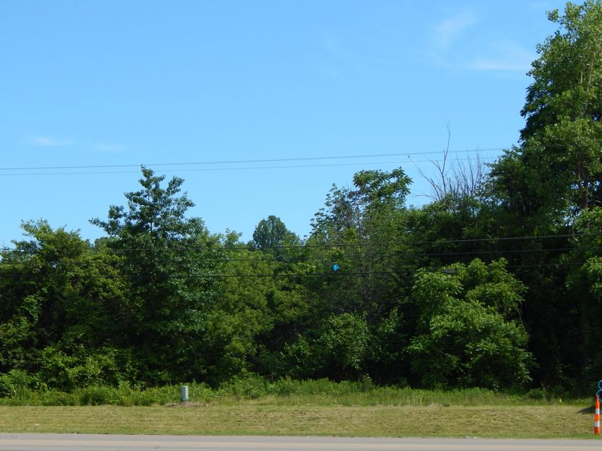 Land for Sale at 8729 OLD US-31 8729 OLD US-31 Berrien Springs, Michigan 49103 United States