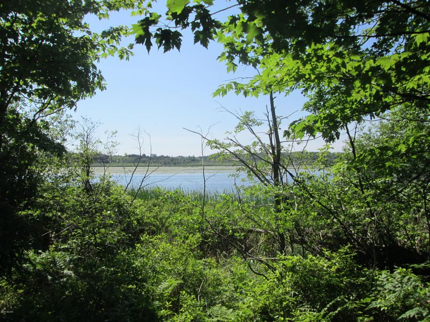 Land for Sale at Piney Road Manistee, Michigan 49660 United States