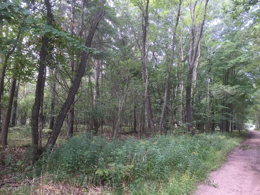 Additional photo for property listing at 1652 US31 1652 US31 Manistee, Michigan 49660 United States