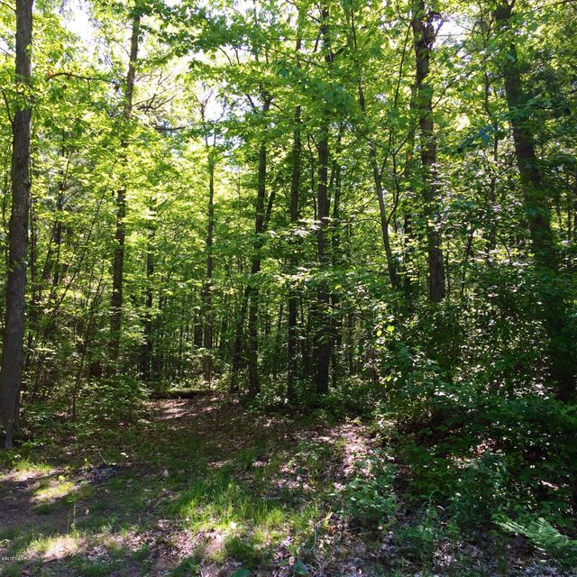 Land for Sale at Weber Muskegon, Michigan 49445 United States