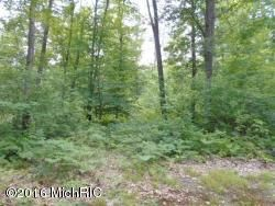 Land for Sale at Dilling Brethren, Michigan 49619 United States