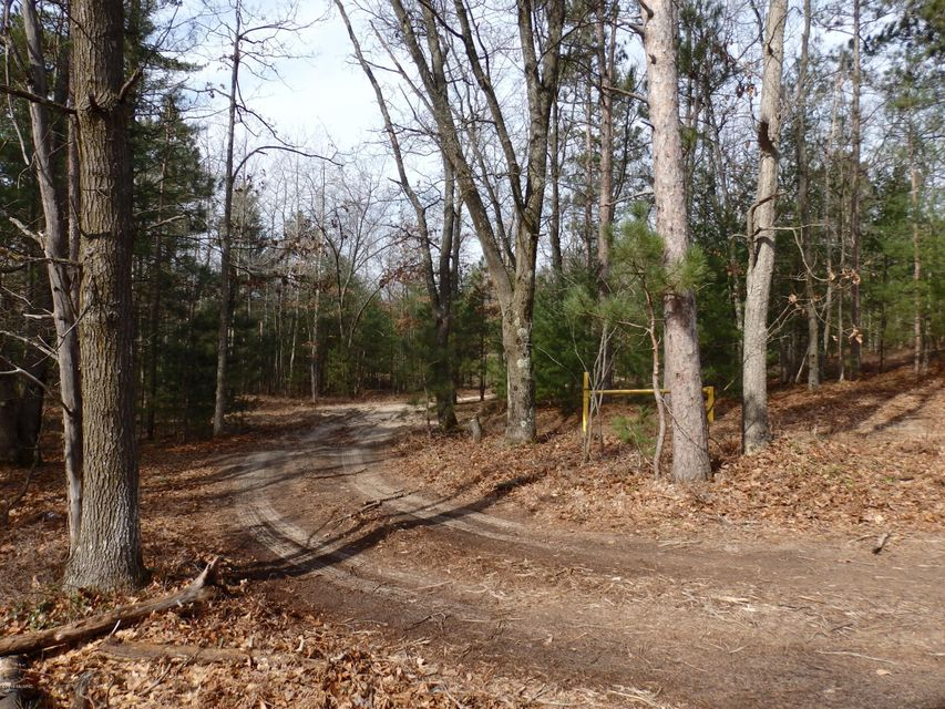 Land for Sale at Maple Manistee, Michigan 49660 United States