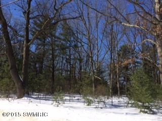 Land for Sale at 3004 NELSON Manistee, Michigan 49660 United States