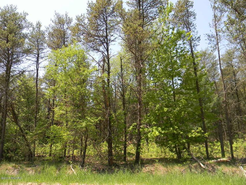 Land for Sale at Green Creek Green Creek Muskegon, Michigan 49445 United States
