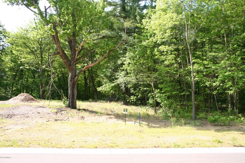 Land for Sale at 16166 Coventry Spring Lake, Michigan 49456 United States
