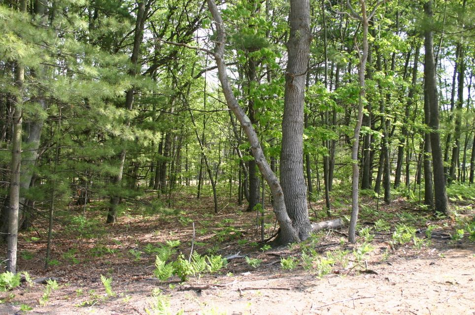 Land for Sale at 16165 Coventry Spring Lake, Michigan 49456 United States