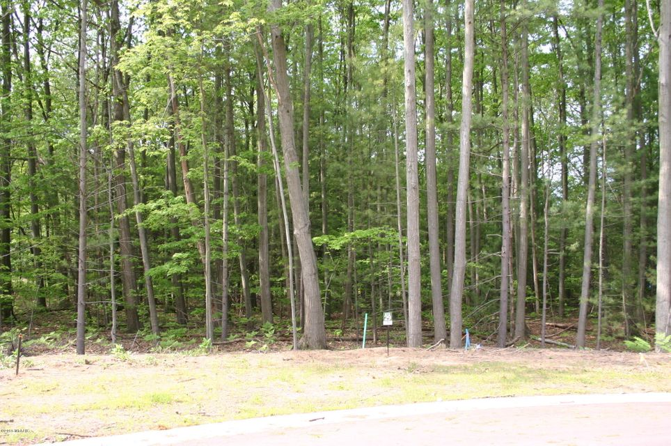 Land for Sale at 18619 Coventry 18619 Coventry Spring Lake, Michigan 49456 United States