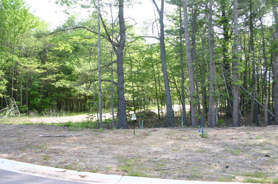 Land for Sale at 18618 Coventry 18618 Coventry Spring Lake, Michigan 49456 United States