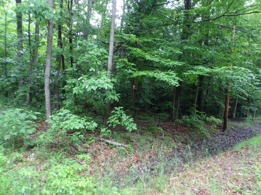 Land for Sale at V/L Green Creek Muskegon, Michigan 49445 United States