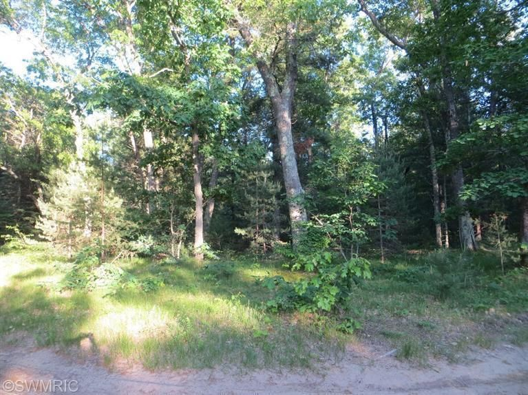 Land for Sale at Raymond Holton, Michigan 49425 United States