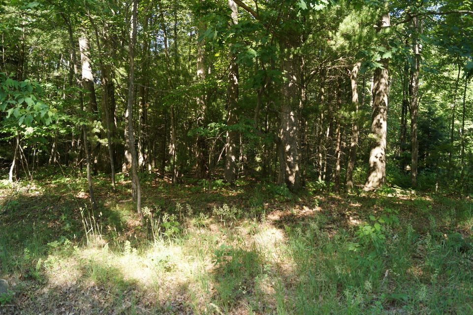 Land for Sale at Peterson Muskegon, Michigan 49445 United States