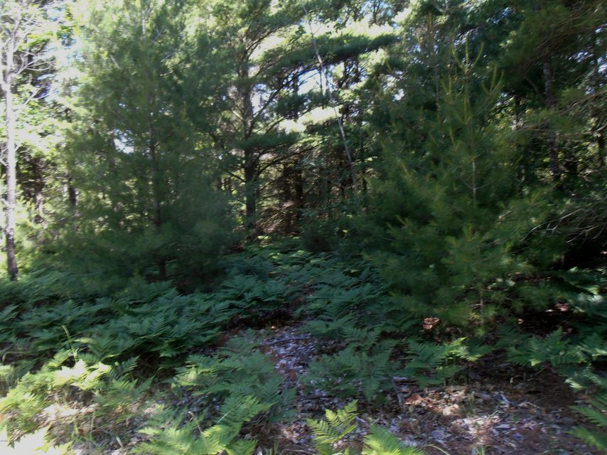 Land for Sale at 3230 West Fox Farm Manistee, Michigan 49660 United States