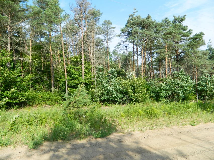 Land for Sale at 2653 24th 2653 24th Shelby, Michigan 49455 United States