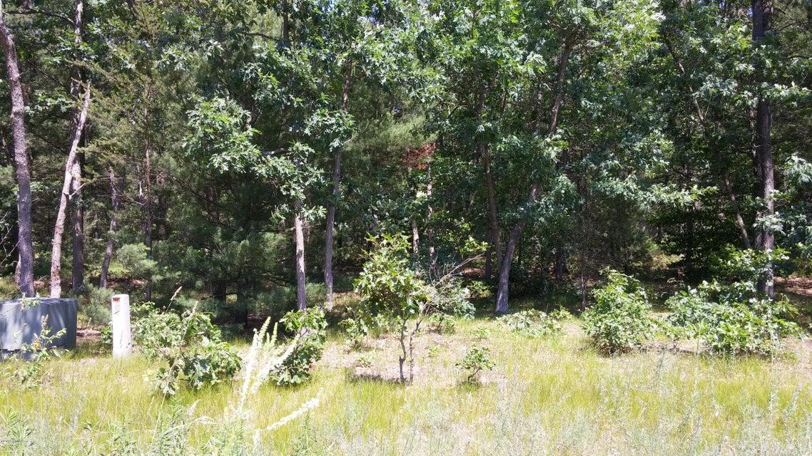 Land for Sale at Danc Twin Lake, Michigan 49457 United States