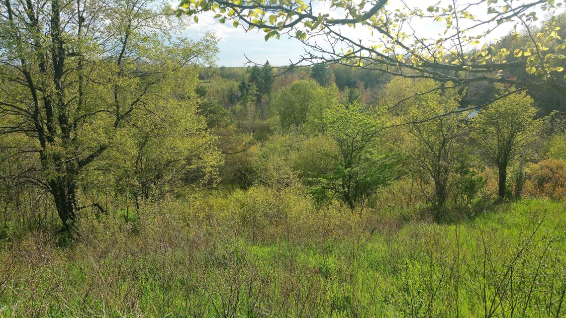 Land for Sale at 180TH Leroy, Michigan 49655 United States