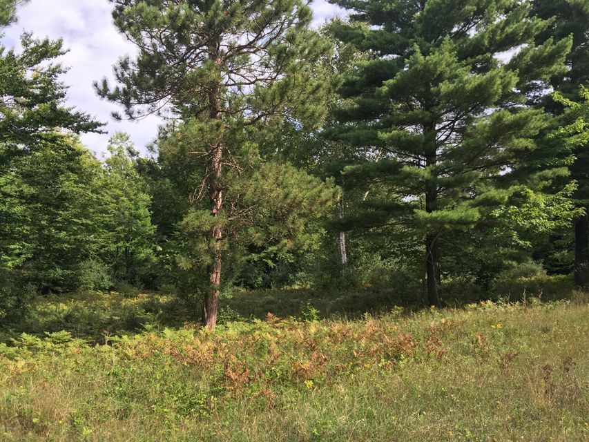 Land for Sale at Kerry Kerry Manistee, Michigan 49660 United States