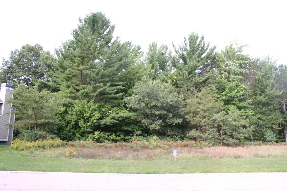 Land for Sale at 18087 Wildwood Spring Lake, Michigan 49456 United States