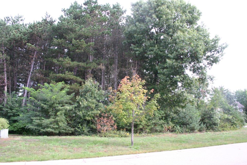 Land for Sale at 17905 Shallow Springs Spring Lake, Michigan 49456 United States