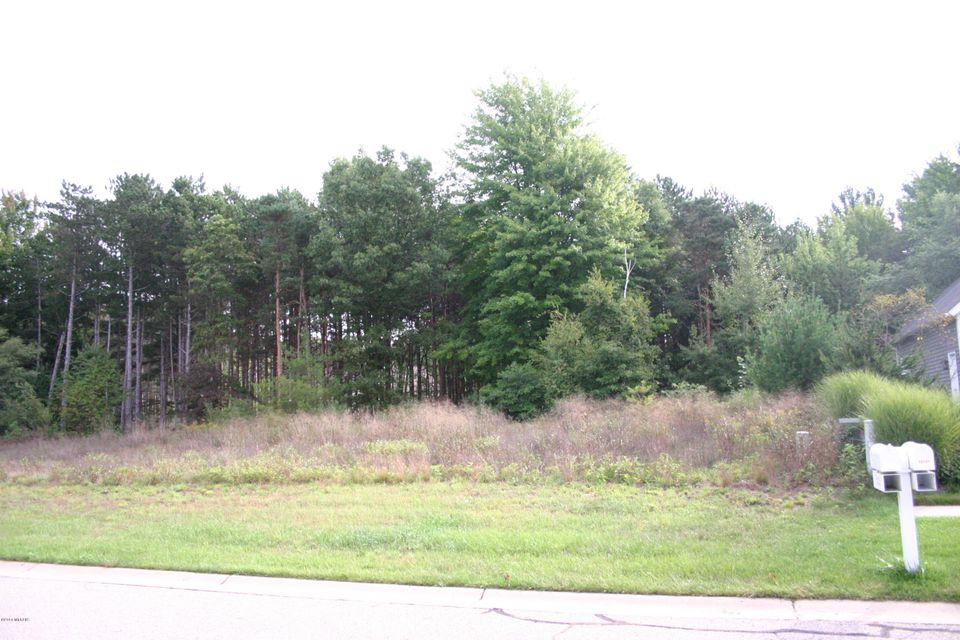 Land for Sale at 18107 Wildwood Springs Spring Lake, Michigan 49456 United States