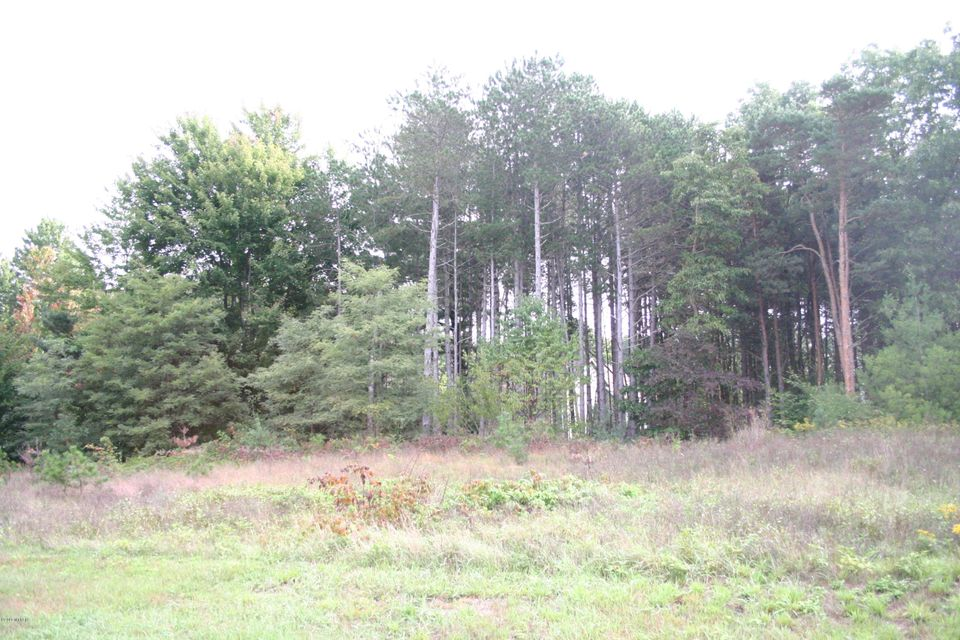 Land for Sale at 18113 Wildwood Springs Spring Lake, Michigan 49456 United States
