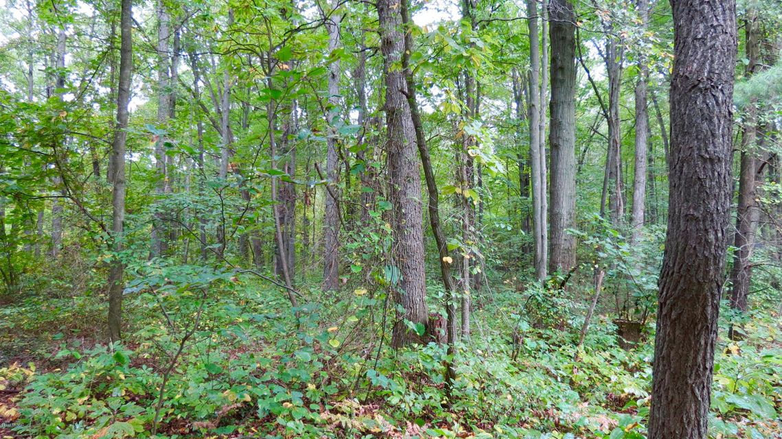 Land for Sale at Brooks Muskegon, Michigan 49442 United States