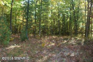 Land for Sale at VL Weber Muskegon, Michigan 49445 United States