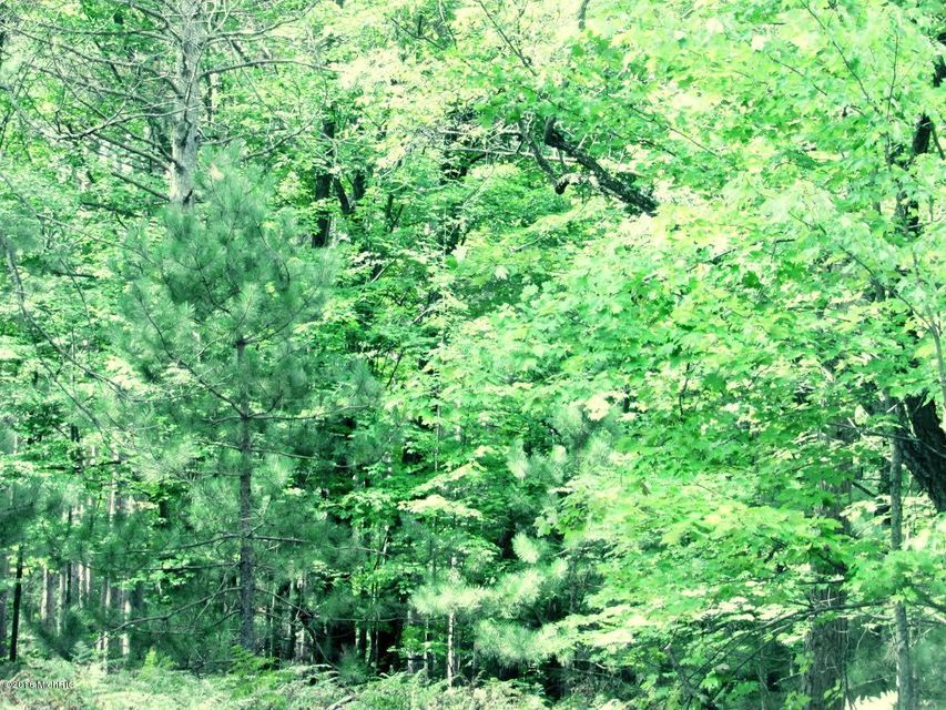 Land for Sale at Reek Fountain, Michigan 49410 United States