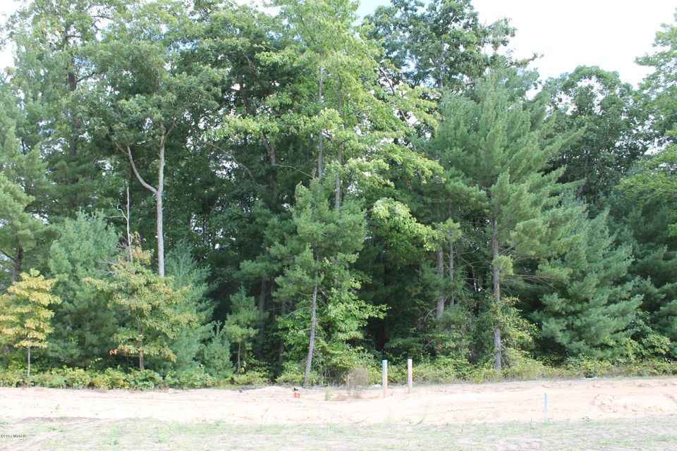 Land for Sale at TBD Stafford Nunica, Michigan 49448 United States