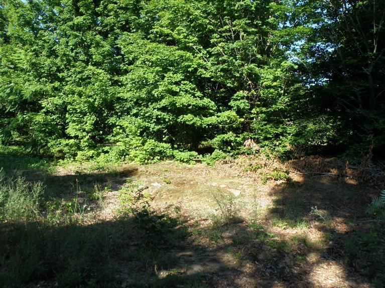 Land for Sale at 1103 Baseline Shelby, Michigan 49455 United States