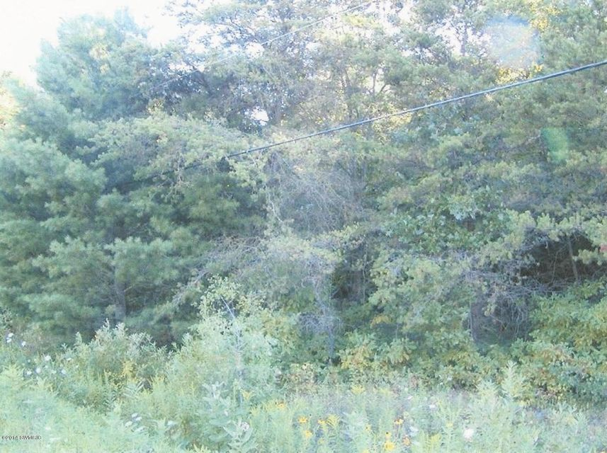 Land for Sale at Hamilton Muskegon, Michigan 49445 United States