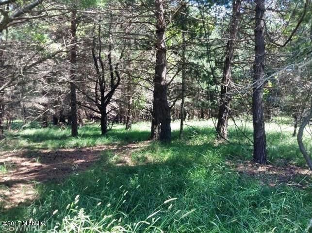 Land for Sale at Ramsdell Manistee, Michigan 49660 United States