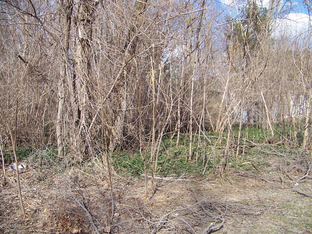 Land for Sale at VL Barney Kalamazoo, Michigan 49004 United States