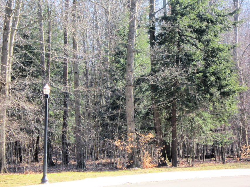 Land for Sale at 6075 Scenic Woods Muskegon, Michigan 49445 United States