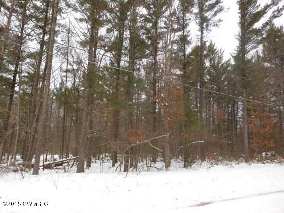 Land for Sale at Benjamin Muskegon, Michigan 49445 United States