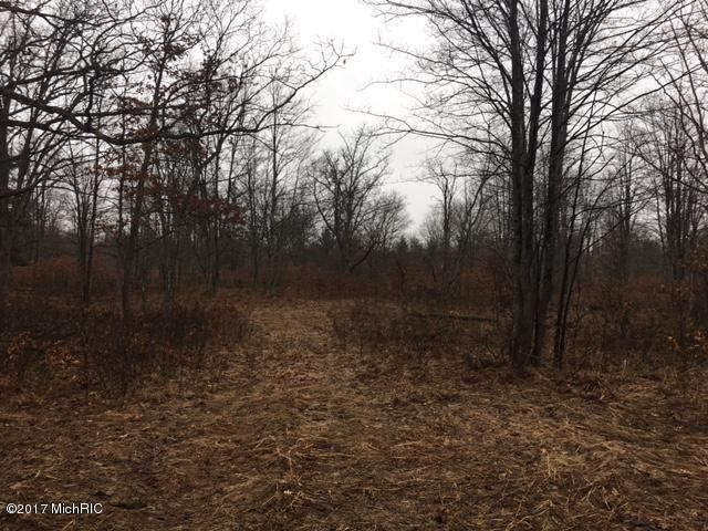 Land for Sale at Caberfae Wellston, Michigan 49689 United States