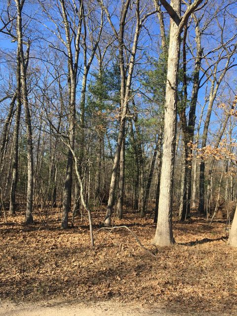Land for Sale at Fruitvale Holton, Michigan 49425 United States