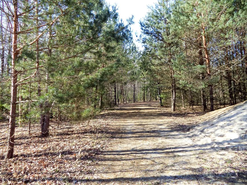 Land for Sale at Sternberg Nunica, Michigan 49448 United States