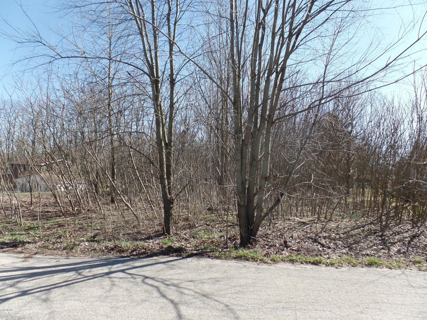 Land for Sale at 1020 Marquette Niles, Michigan 49120 United States