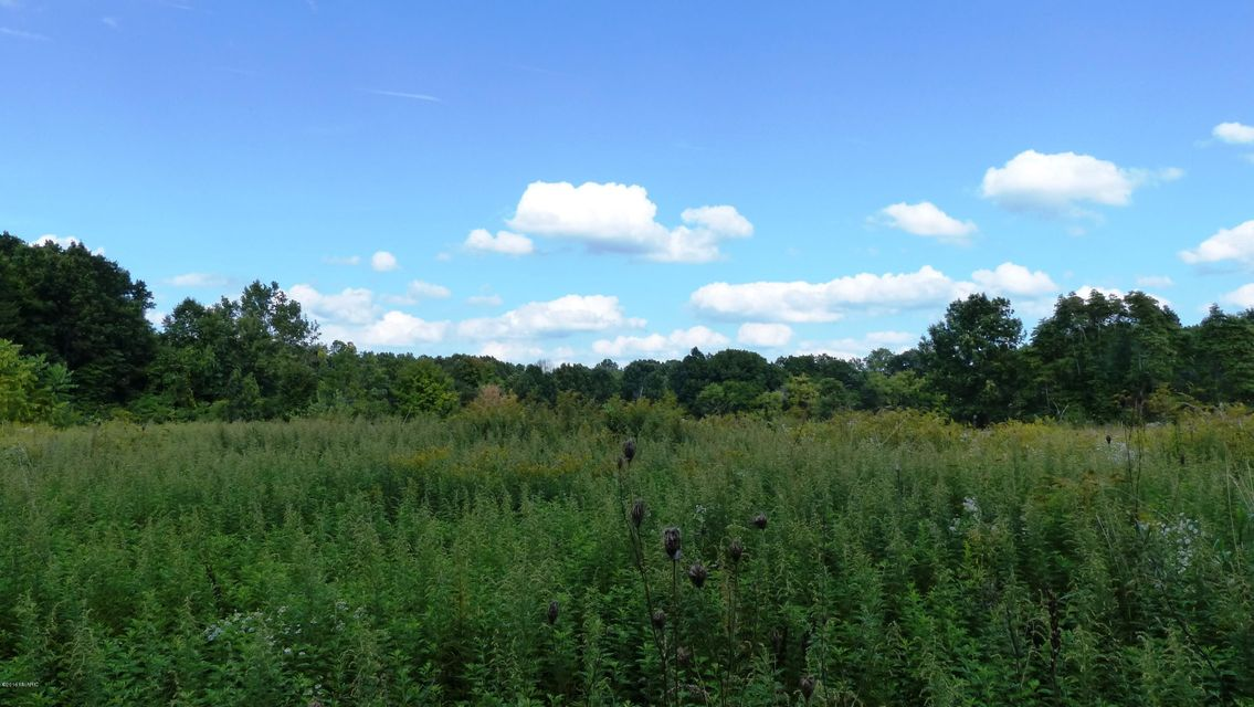 Land for Sale at 32nd Lawton, Michigan 49065 United States