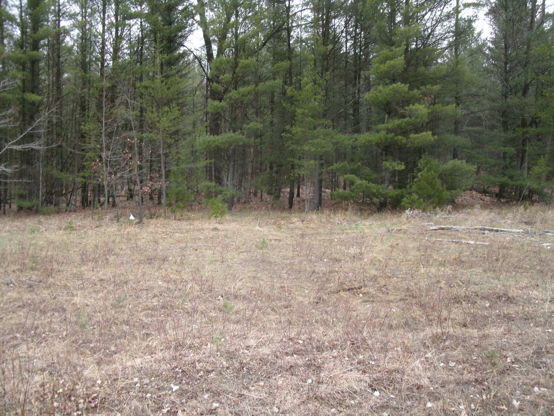Land for Sale at Pine Creek Pine Creek Brethren, Michigan 49619 United States