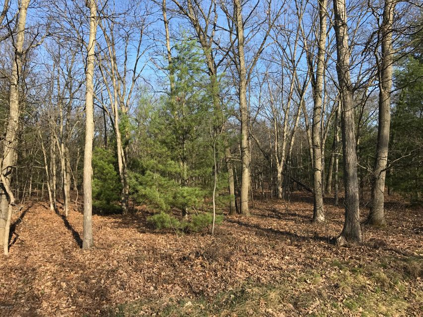 Land for Sale at Nestrom Muskegon, Michigan 49445 United States